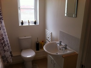 Flat Bathroom 2